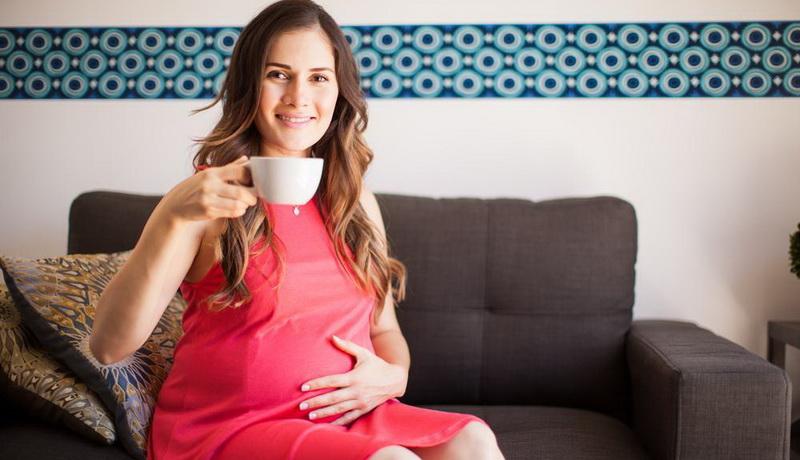 ромашка при беременности противопоказана